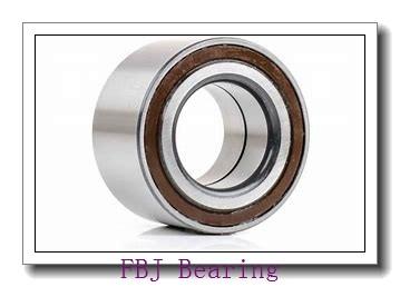 65 mm x 100 mm x 18 mm  65 mm x 100 mm x 18 mm  FBJ 6013 FBJ Bearing