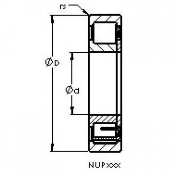 AST NUP2215 EM AST Bearing