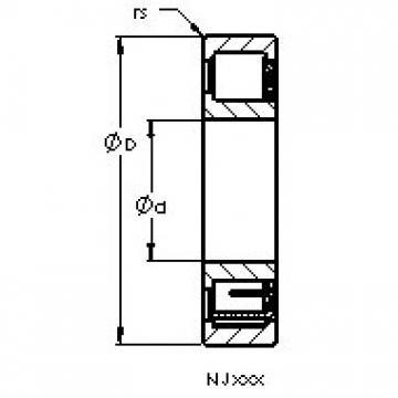 AST NJ2216 EM AST Bearing