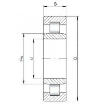 105 mm x 190 mm x 36 mm  105 mm x 190 mm x 36 mm  ISO NU221 ISO Bearing
