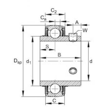 FAG UC206-20 FAG Bearing