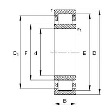 55 mm x 100 mm x 25 mm  55 mm x 100 mm x 25 mm  FAG NU2211-E-TVP2 FAG Bearing