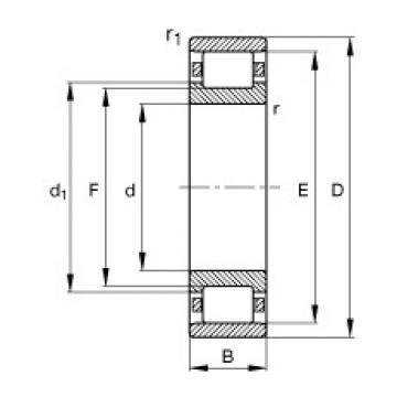 30 mm x 72 mm x 19 mm  30 mm x 72 mm x 19 mm  FAG N306-E-TVP2 FAG Bearing