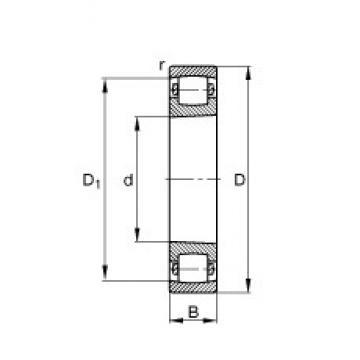 55 mm x 100 mm x 21 mm  55 mm x 100 mm x 21 mm  FAG 20211-K-TVP-C3 FAG Bearing