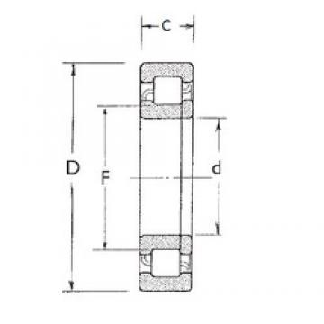 35 mm x 80 mm x 21 mm  35 mm x 80 mm x 21 mm  FBJ NUP307 FBJ Bearing
