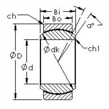 AST GE10C AST Bearing