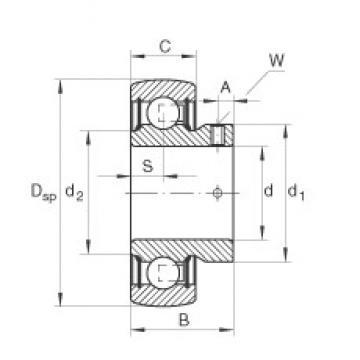 INA AY25-NPP-B INA Bearing