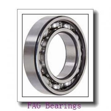 20 mm x 47 mm x 14 mm  20 mm x 47 mm x 14 mm  FAG NJ204-E-TVP2 + HJ204-E FAG Bearing