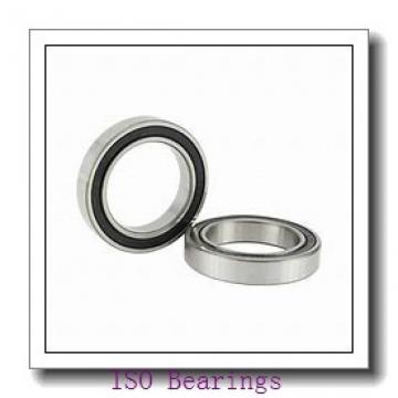 45 mm x 100 mm x 25 mm  45 mm x 100 mm x 25 mm  ISO 7309 A ISO Bearing