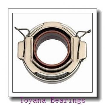 Toyana 2201-2RS Toyana Bearing