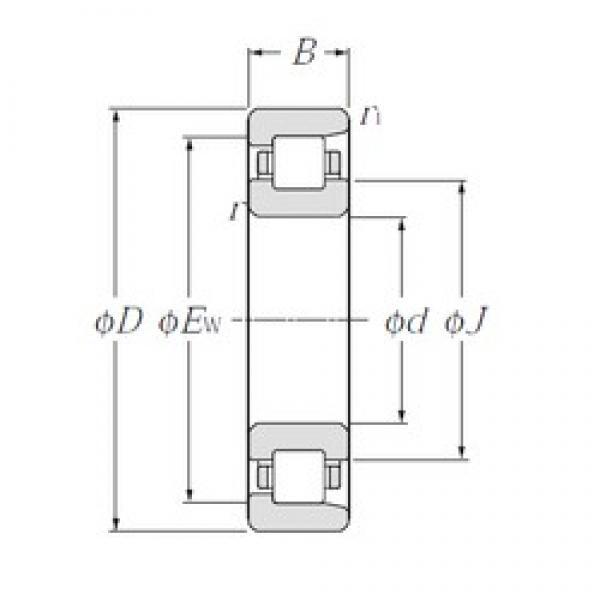 25 mm x 62 mm x 24 mm  25 mm x 62 mm x 24 mm  CYSD NF2305 CYSD Bearing #3 image
