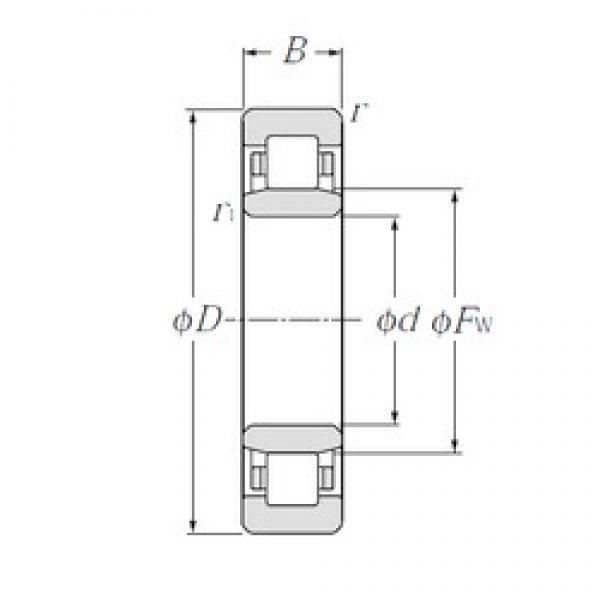 25 mm x 52 mm x 18 mm  25 mm x 52 mm x 18 mm  CYSD NU2205E CYSD Bearing #3 image