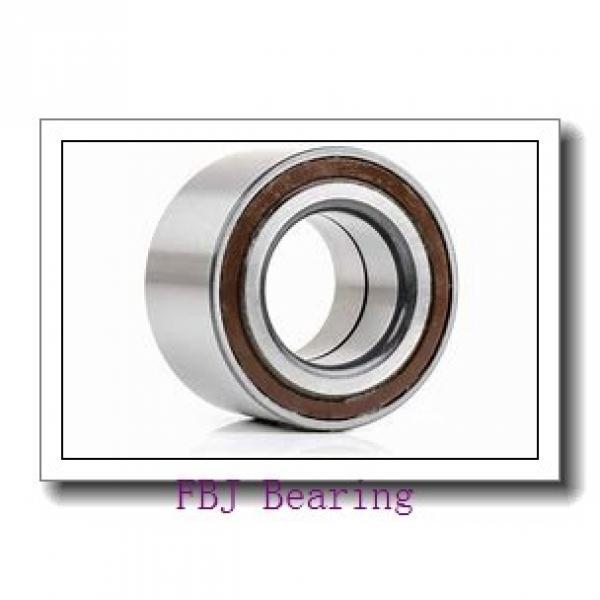 45 mm x 100 mm x 25 mm  45 mm x 100 mm x 25 mm  FBJ QJ309 FBJ Bearing #1 image