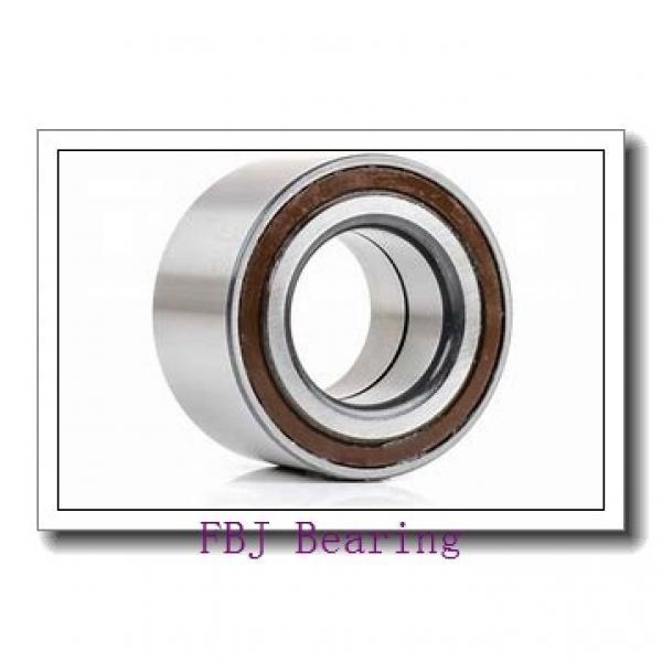 45 mm x 100 mm x 25 mm  45 mm x 100 mm x 25 mm  FBJ QJ309 FBJ Bearing #2 image